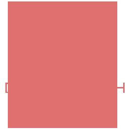 Diane Bish Organ